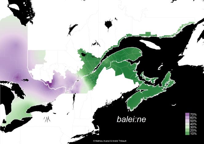 baleine_raster1.png