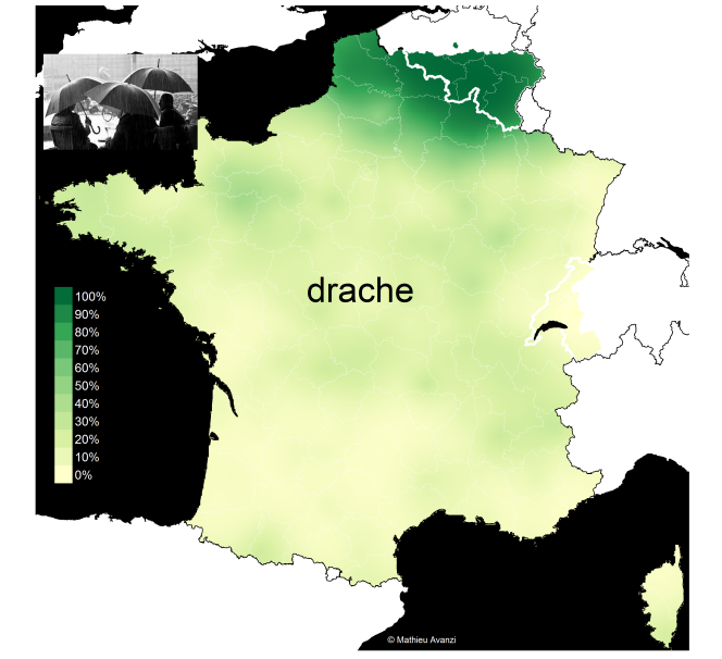 drache_with_label_all.png